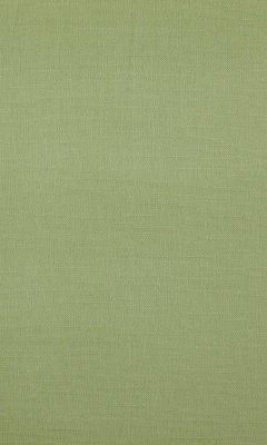 341 «Canvas» / 20 Bonfire Sage ткань Daylight