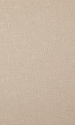 341 «Canvas» / 21 Bonfire Sand ткань Daylight