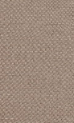 337 «Fusion» / 21 Steel Nut ткань DAYLIGHT