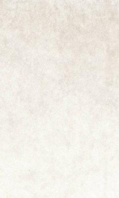 2331/568 КОЛЛЕКЦИИ: FLUID, ANTIQUE