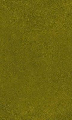 2419/51 КОЛЛЕКЦИЯ: AURA ESPOCADA