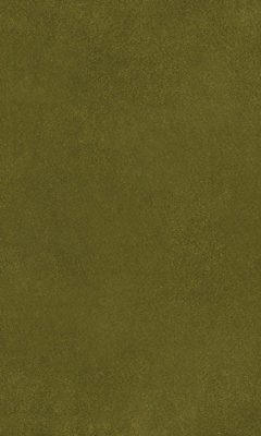 2419/52 КОЛЛЕКЦИЯ: AURA ESPOCADA