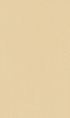 2421/91 КОЛЛЕКЦИЯ: SHEERS ESPOCADA