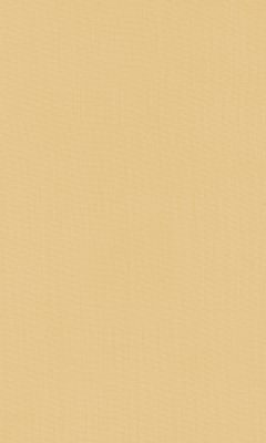 2421/92 КОЛЛЕКЦИЯ: SHEERS ESPOCADA