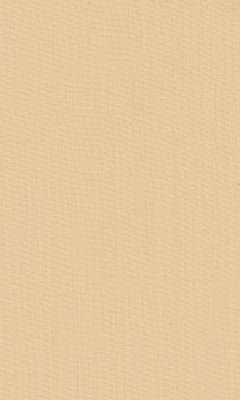 2421/93 КОЛЛЕКЦИЯ: SHEERS ESPOCADA