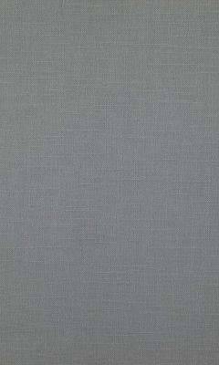 341 «Canvas» / 26 Bonfire Titanium ткань Daylight