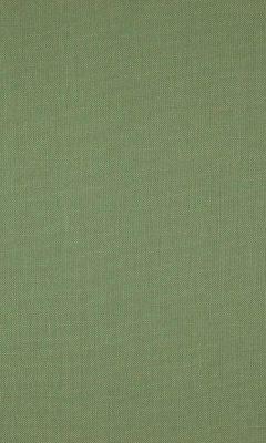 341 «Canvas» / 28 Canvas Basil ткань Daylight