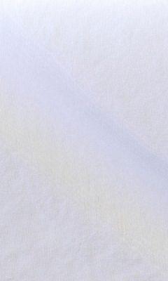 LEO 01 CLARA GALLERIA ARBEN