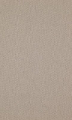 341 «Canvas» / 29 Canvas Buff ткань Daylight
