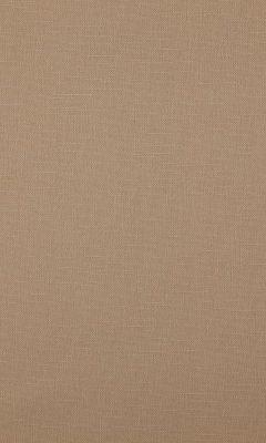 341 «Canvas» / 3 Bonfire Buff ткань Daylight