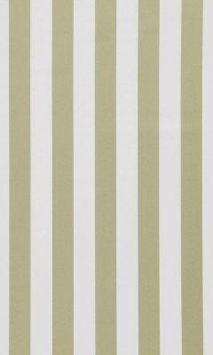 321 «Amilly» / 70 Vira Olive ткань DAYLIGHT