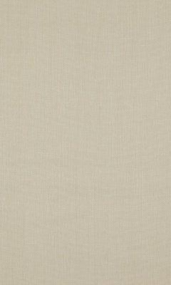 341 «Canvas» / 31 Canvas Ecru ткань Daylight