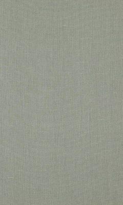 341 «Canvas» / 33 Canvas Haze ткань Daylight