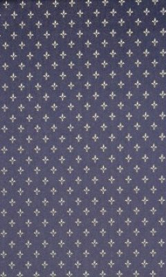 ART.7C34 LYS COL. NAVY INTEX
