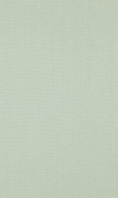 341 «Canvas» / 37 Canvas Lichen ткань Daylight