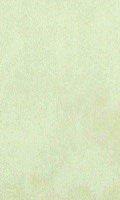 310 «Fabriano» / 37 Renate Cream ткань DAYLIGHT
