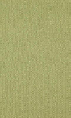 341 «Canvas» / 38 Canvas Lizard ткань Daylight