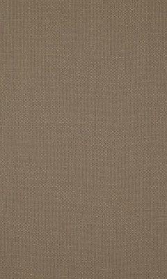 341 «Canvas» / 39 Canvas Mushroom ткань Daylight