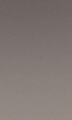 Коллекция Greta Артикул Greta Цвет: Seal Бархаты типа Багира DAYLIGHT (Дейлайт)