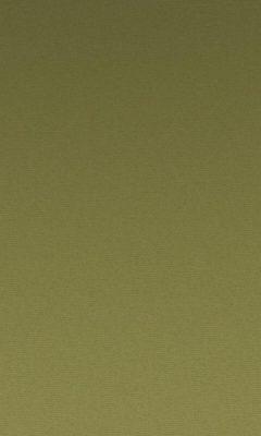 Коллекция Greta Артикул Greta Цвет: Cactus Бархаты типа Багира DAYLIGHT (Дейлайт)