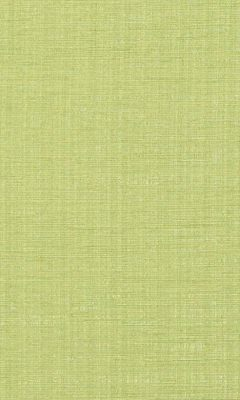 323 «Cassel» / 49 Raville Lime ткань DAYLIGHT