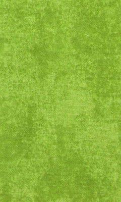 310 «Fabriano» / 41 Renate Olive ткань DAYLIGHT