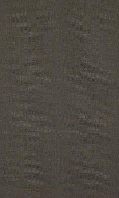 341 «Canvas» / 46 Canvas Slate ткань Daylight