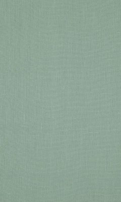 341 «Canvas» / 48 Canvas Spearmint ткань Daylight