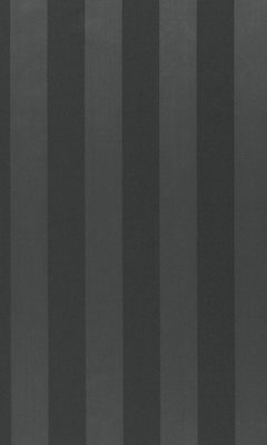 338 «Candy Stripes» / 9 Elvan Charcoal ткань Daylight