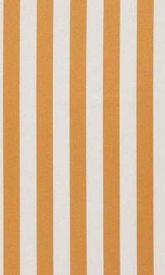 321 «Amilly» / 76 Vira Pumpkin ткань DAYLIGHT