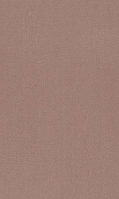 Коллекция Manitu Артикул Manitu Цвет: Cappuccino Однотонные сатины DAYLIGHT (Дейлайт)