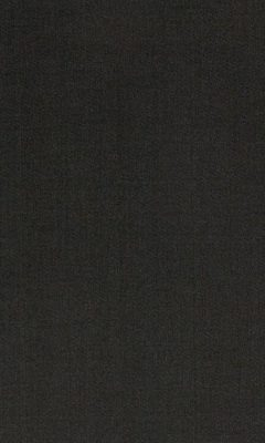 Коллекция Manitu Артикул Manitu Цвет: Gargoyle Однотонные сатины DAYLIGHT (Дейлайт)