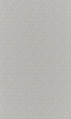 Коллекция Outfit Артикул Sheffild Цвет: Dove Уличные ткани DAYLIGHT (Дейлайт)