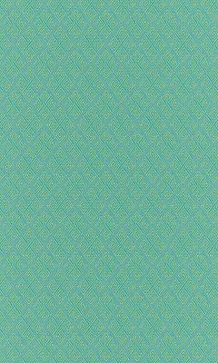 Коллекция Outfit Артикул Sheffild Цвет: Dragonfly Уличные ткани DAYLIGHT (Дейлайт)