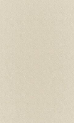 Коллекция Outfit Артикул Sheffild Цвет: Ivory Уличные ткани DAYLIGHT (Дейлайт)
