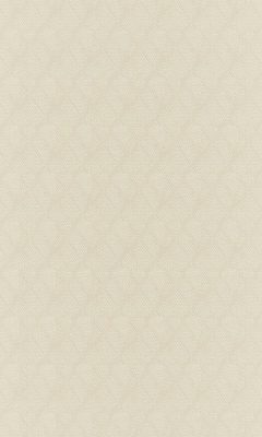 Коллекция Outfit Артикул Sheffild Цвет: Pearl Уличные ткани DAYLIGHT (Дейлайт)