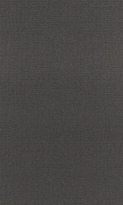 Коллекция Outfit Артикул Tottenham Цвет: Carbon Уличные ткани DAYLIGHT (Дейлайт)