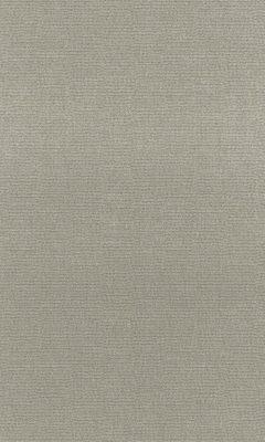 Коллекция Outfit Артикул Tottenham Цвет: Iron Уличные ткани DAYLIGHT (Дейлайт)