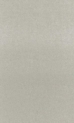 Коллекция Outfit Артикул Tottenham Цвет: Limestone Уличные ткани DAYLIGHT (Дейлайт)