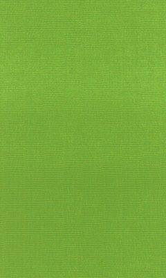 Коллекция Outfit Артикул Tottenham Цвет: Parrot Уличные ткани DAYLIGHT (Дейлайт)
