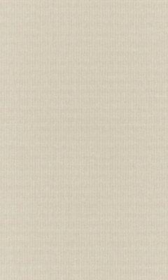 Коллекция Outfit Артикул Tyberton Цвет: Almond Уличные ткани DAYLIGHT (Дейлайт)