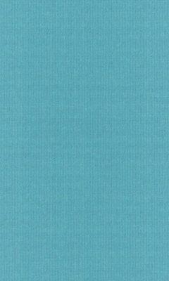 Коллекция Outfit Артикул Tyberton Цвет: Aqua Уличные ткани DAYLIGHT (Дейлайт)