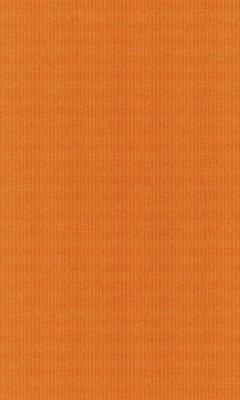 Коллекция Outfit Артикул Tyberton Цвет: Carrot Уличные ткани DAYLIGHT (Дейлайт)
