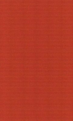 Коллекция Outfit Артикул Tyberton Цвет: Spice Уличные ткани DAYLIGHT (Дейлайт)
