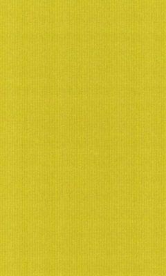 Коллекция Outfit Артикул Tyberton Цвет: Sunflower Уличные ткани DAYLIGHT (Дейлайт)