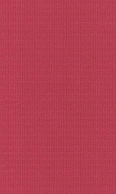 Коллекция Outfit Артикул Tyberton Цвет: Tulip Уличные ткани DAYLIGHT (Дейлайт)