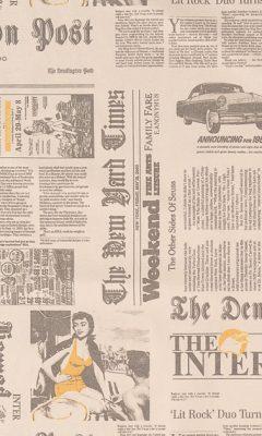 NEWSPAPER ANKA