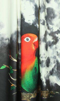 LOVEBIRD PERSAN