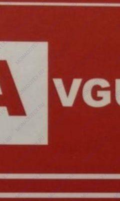 Design Name 720031 AVGUST (АВГУСТ)
